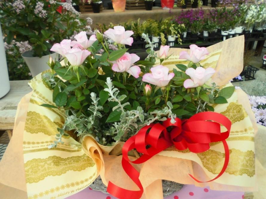 ミニバラかごもり飯田市庭つくり、外構工事、ガーデン、ガーデニング