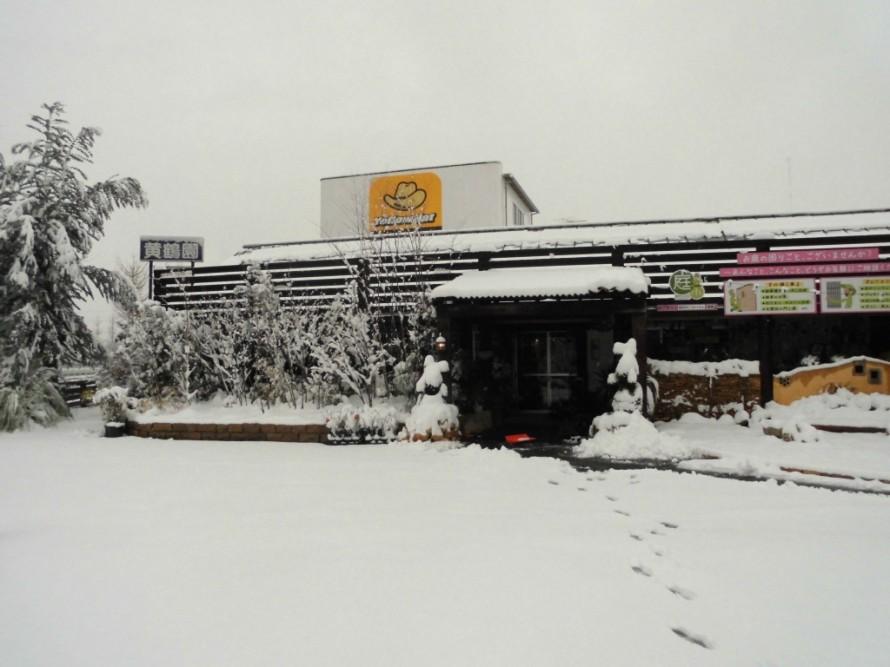 飯田市庭作り