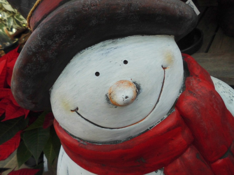 もうすぐクリスマス クリスマスにぴったりのポインセチアやプリンセチア続々入荷しております、綺麗な赤やピンクが目をひくポインセチア、贈り物としても喜ばれるポインセチアです、飯田市でお庭のことなら何でもご相談ください