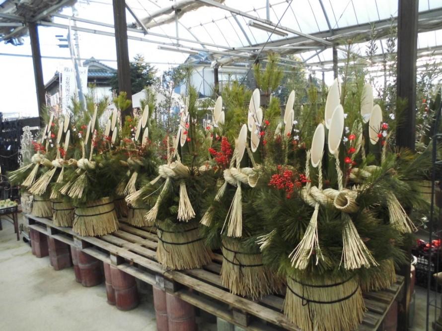 田市庭作りおススメの植物を取り扱うお店黄鶴園