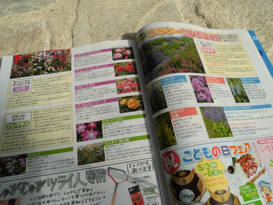 月刊飯田に黄鶴園のガーデニング特集として掲載させていただきました 植え込みの基礎から毎年楽しめる宿根草特集 これからお庭で華やかに咲き誇るバラの特集 人気のハーブ特集と盛りだくさんです 5月3日からはお店もお花でいっぱいになります 母の日にお花の贈り物をしてみては 飯田市でお庭のことなら何でもお気軽にご相談くださいこうかくえん