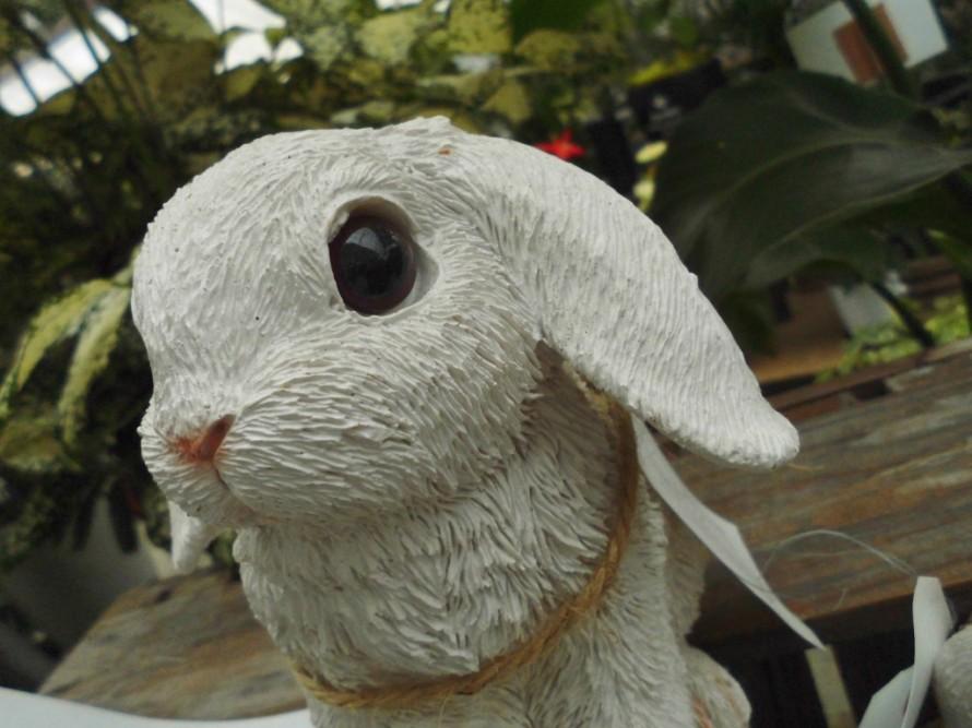 お庭に飾ってもオシャレな動物の置物入荷しています 可愛いウサギの置物でお庭を可愛く演出 飯田市でお庭の事なら何でもお気軽にご相談ください