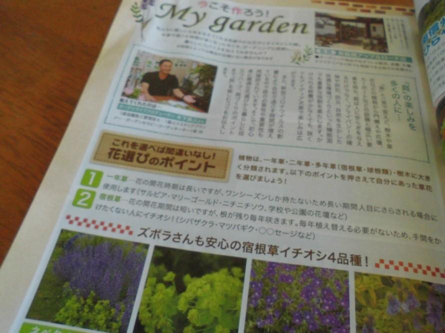 飯田市庭作りおススメの植物を取り扱うお店こうかくえん