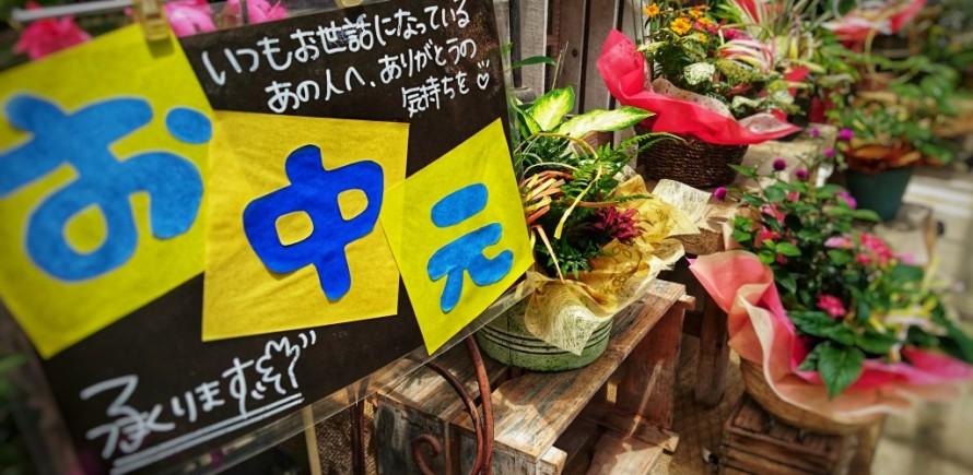 飯田市でお庭の事なら何でもお気軽にご相談。お中元。観葉植物おススメ。