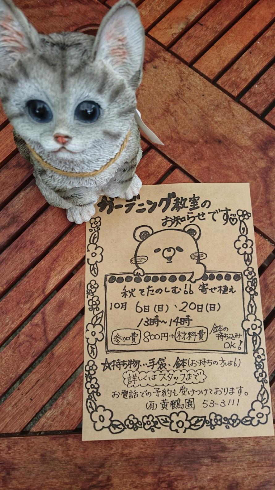 10月ガーデニング教室。寄せ植え。飯田市でお庭の事なら何でもお気軽にご相談。